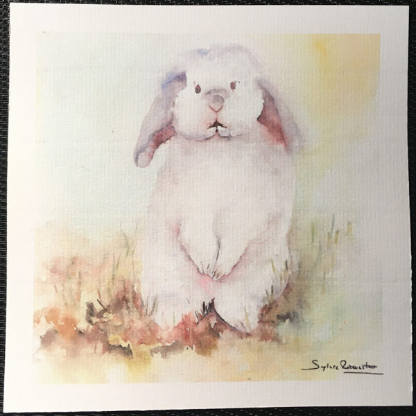 Carte le lapin blanc
