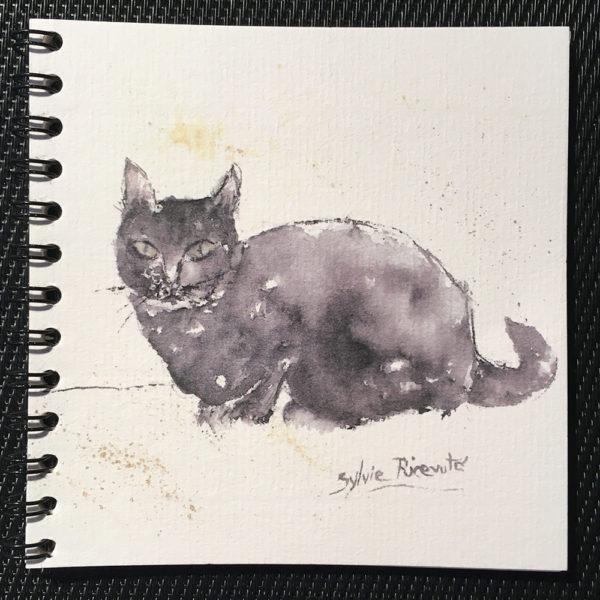 Petit carnet le petit chat noir