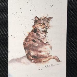 Carte rectangle - le chat brun